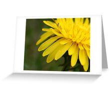 Leave Your Worries Behind Greeting Card