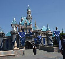 Disney Castle Disney Sleeping Beauty Castle by notheothereye