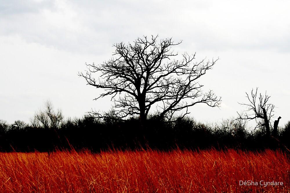 Red Tree by DéSha Metschke