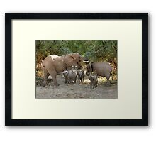 ELEPHANT FAMILY - SAMBURU Framed Print