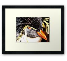 If looks could kill... Framed Print