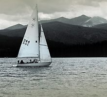 Solitary Sail by Brian Kerls  photography
