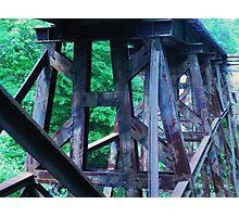 Train Trestle Photographic Print