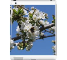 Humble Bumble and Cherry Blossom iPad Case/Skin
