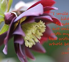 I Smile, Hellebore Flower with quote by rumisw
