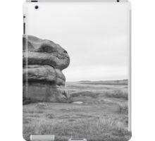 Lonely rock on moors iPad Case/Skin