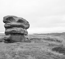 Lonely rock on moors by risphoto