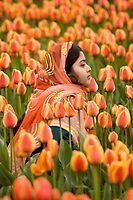 Lady in Orange by Appel
