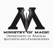 Ministry of Magic - Accidents & Catastrophes by Fawkes