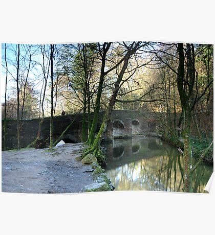 Plymbridge in Spring: Dartmoor UK Poster