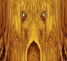 Woody 89 by RickMosher