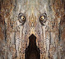 Woody 84 by RickMosher