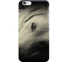 Freddie iPhone Case/Skin