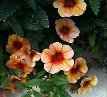 Pretty Peachy Flowers by silverdragon
