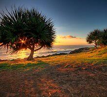 Shining Star Hidden Sun by Chris Lofqvist