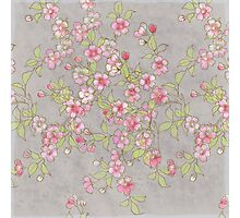 Watercolor Cherry Blossoms on Grey Wash Photographic Print