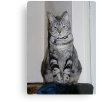 Most disapproving Metal Print