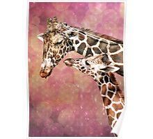 Mom and Baby Giraffe Poster