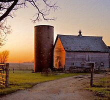 Spring At Birch Barn by LynyrdSky