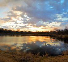 Sunrise Pond 2 by LynyrdSky