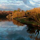 Boyne River by Martina Fagan