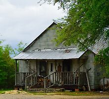 Dilapidated Farmhouse by AlixCollins