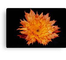 Fire Flower. Canvas Print