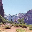 Entrance to Zion Canyon National Park, Utah by Adrian Paul