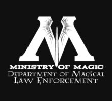 Ministry of Magic - Law Enforcement by Fawkes