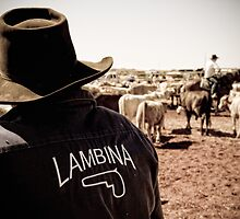 Team Lambina - Marla, South Australia by Stephen Permezel