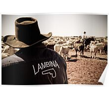 Team Lambina - Marla, South Australia Poster