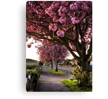 Suburban Spring Canvas Print
