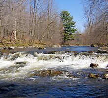 Spring On Yamaska River by marchello