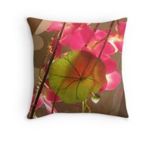 Backlit Orchids Throw Pillow