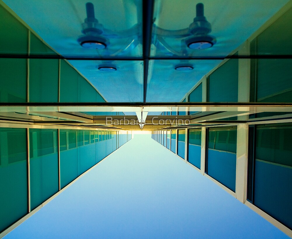 Unusual perspective by Barbara  Corvino