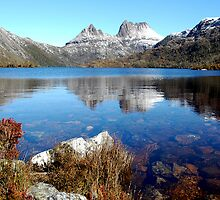 Reflections in Dove Lake Cradle Mountain by cradlemountain