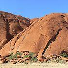Uluru # 2 , N.T. Central Australia  Just a small section,  by Virginia  McGowan