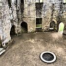 Old wardour Castle 10 by davesphotographics