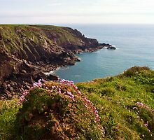 St Ann's Head, Pembrokeshire by Paul Davey