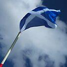 Scotland by Mishimoto