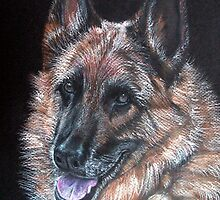 Rocky, German Shepherd Dog by Linda Callaghan