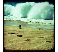 BEACH BLISS - Calmness in the Storm Photographic Print