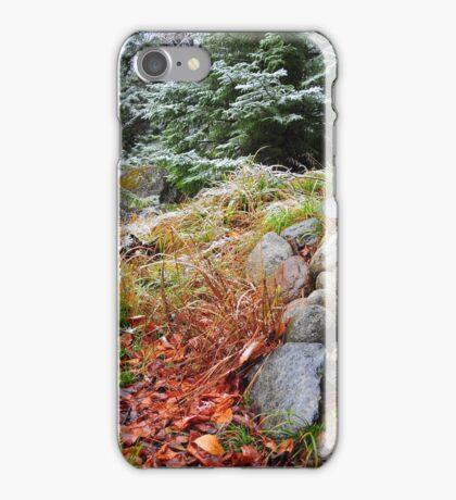 Autumn vs Winter iPhone Case/Skin