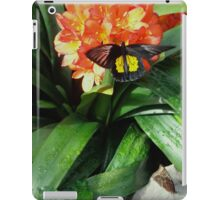 Birdwing (or Golden Birdwing) Butterfly and Friend iPad Case/Skin