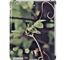 00630035 iPad Case/Skin