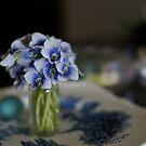 a bit of violet  by Jeff Stroud