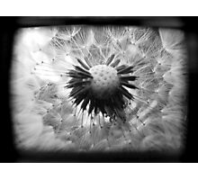 On the Inside - TTV Photographic Print
