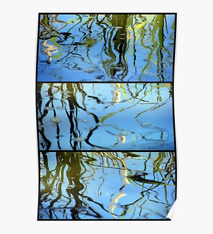 Pond Life - Triptych Poster