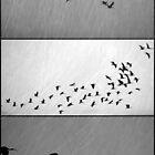 Ibis - Triptych by Kitsmumma