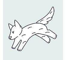 Jump Doggy Photographic Print